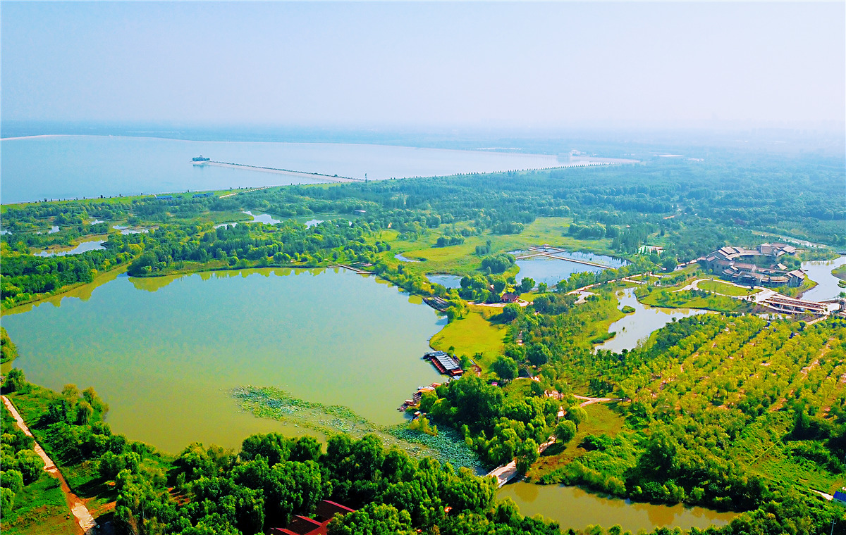 飞吧山东|航拍济西国家湿地公园 碧波荡漾绿意怏然