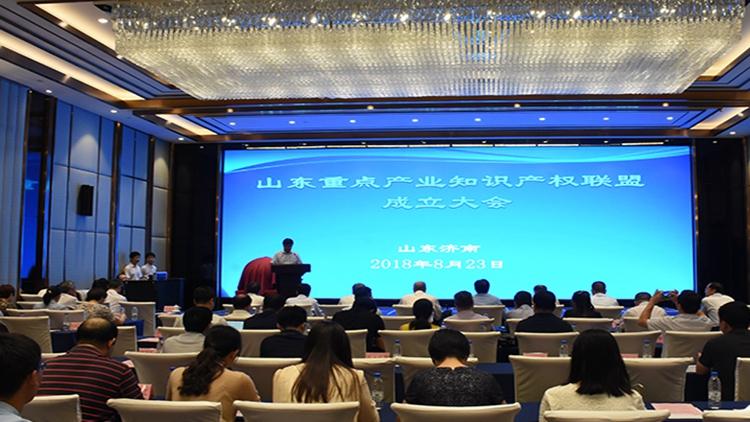 中国知识产权研究会理事长田力普:知识产权就是金山银山