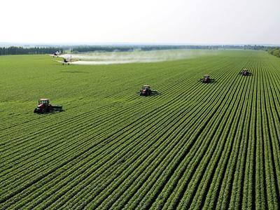 山东将开展农业行业风险隐患排查整治行动 分五个阶段