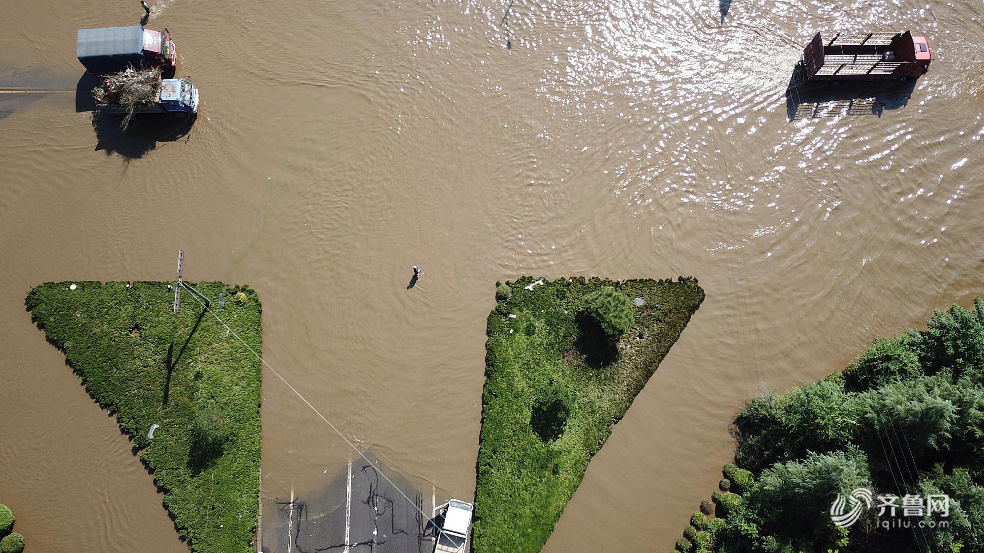 截至26日23时 潍坊累计无害化处理生猪等溺亡畜禽4498吨