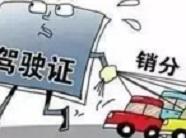 """山东:""""交管12123""""可替人销分 最多可绑定3辆别人的车(附操作指南)"""