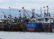 黄渤海将开渔:山东将强化商渔船防避碰信息化建设