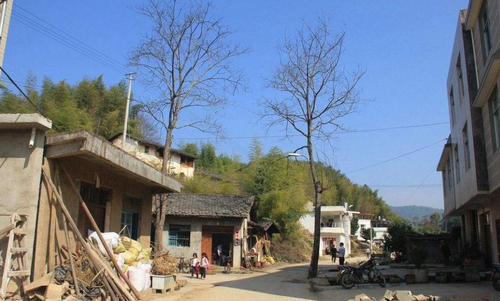 《人民日报》关注山东嘉祥县:探索新路让后进村变成先进村