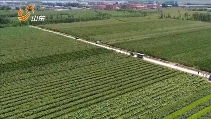 山东省农业科学院科技开放周在德州启动
