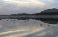 黄水东调一期工程通水成功 600万立方的黄河水注入潍北第二平原水库