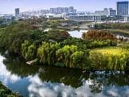 2018年国家森林城市拟批准名单公示!山东这些城市入围