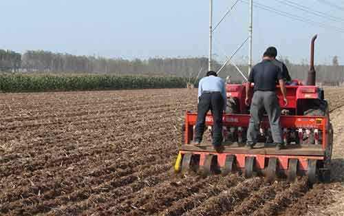 山东发布2018年小麦秋季病虫草害综合防控技术意见