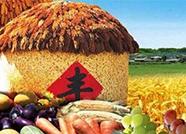 农民丰收节丨平原县聚福社区农民艺术节入选100个乡村文化活动