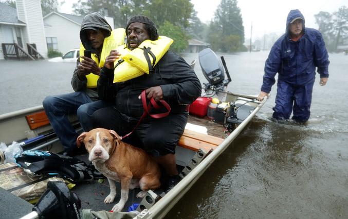 """飓风""""佛罗伦萨""""登陆美国北卡罗来纳州 8万8千人供电被中断"""