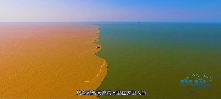 网推 山东宣传片低音版(杨).00_01_17_03.静止007.jpg