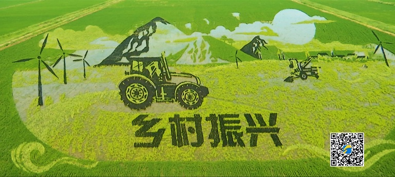 网推 山东宣传片低音版(杨).00_05_12_13.静止016.jpg
