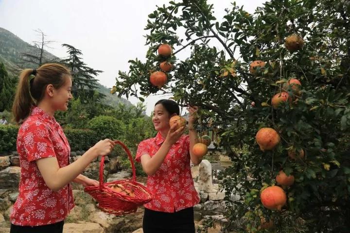枣庄峄城这个项目获省级资金支持75万元