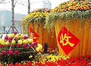闪电视界丨向农民致敬、为丰收礼赞!德州欢庆中国农民丰收节
