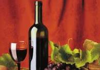 第十一届烟台国际葡萄酒博览会于10月13日开幕