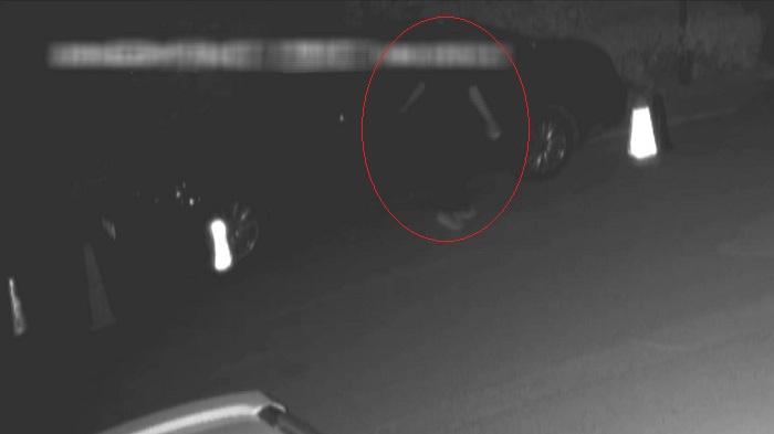 """108秒丨上过电视的小偷在菏泽二进宫 自称这次是""""故意""""的"""