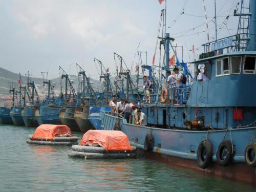 山东严肃问责渔业安全事故相关责任人员 倒逼海上渔业安全生产责任落实