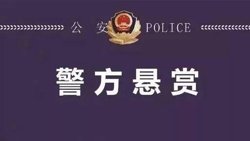 东阿警方侦破一起涉恶犯罪案 现征集嫌疑人违法犯罪线索