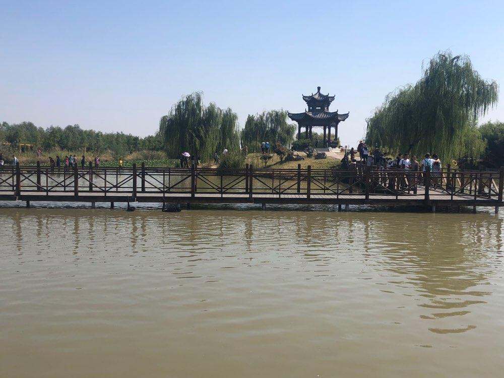 邂逅美丽秋色!国庆假期来台儿庄古城双龙湖观鸟亲近大自然吧