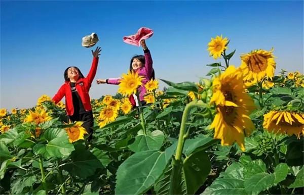 国庆假期第二天的济南:文旅活动人文展览样样齐全