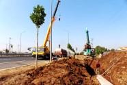 灾后重建进行时丨寿光纪台镇农田排涝工程建设全速推进