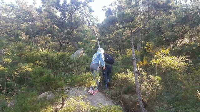 情侣登山迷路被困一夜 蓝天救援队搜救下山