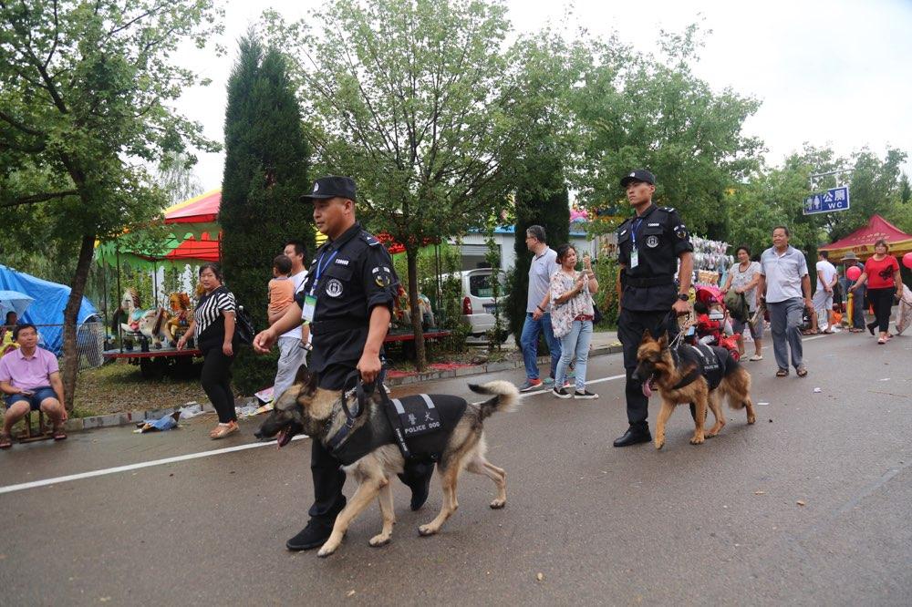 淄博国庆期间社会治安持续稳定 每日2000警力屯警街面