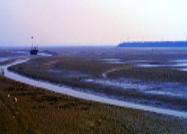 寿光市老河口海岸带整治修复工程开工在即 这段路封闭至年底