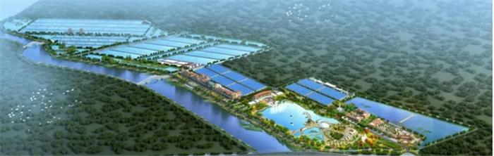 占地1000亩 日照涛雒镇将成一处诗意海上田园