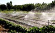节水新成效 潍坊1-8月份核减计划用水量75101吨