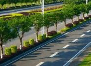 济南今年打通28条瓶颈路 还有14个力争年底通车