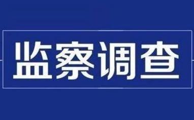 兰陵县矿坑镇棠林村村委会主任蒋凡飞接受监察调查