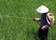 滨城区公示6家不符合农药经营许可条件单位