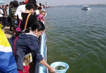 2018沂河放鱼活动将于20日举行 将开展7大主题活动