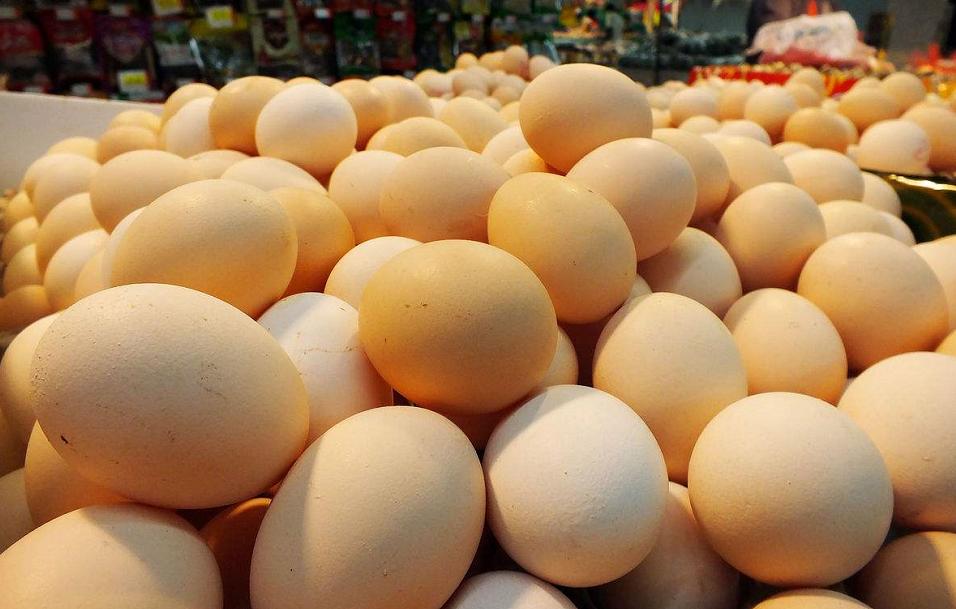 均价8.92/公斤 山东鸡蛋价格大幅回落