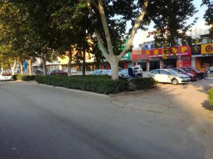 临清一汽车美容店恶意破坏门前绿化带 被立案调查