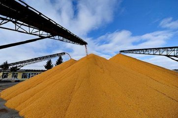 德州全面推进农业信贷担保 农业经营主体可贷款10至200万