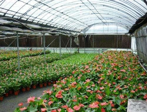 山东省拟创建5个省级生态循环农业示范县(市、区)