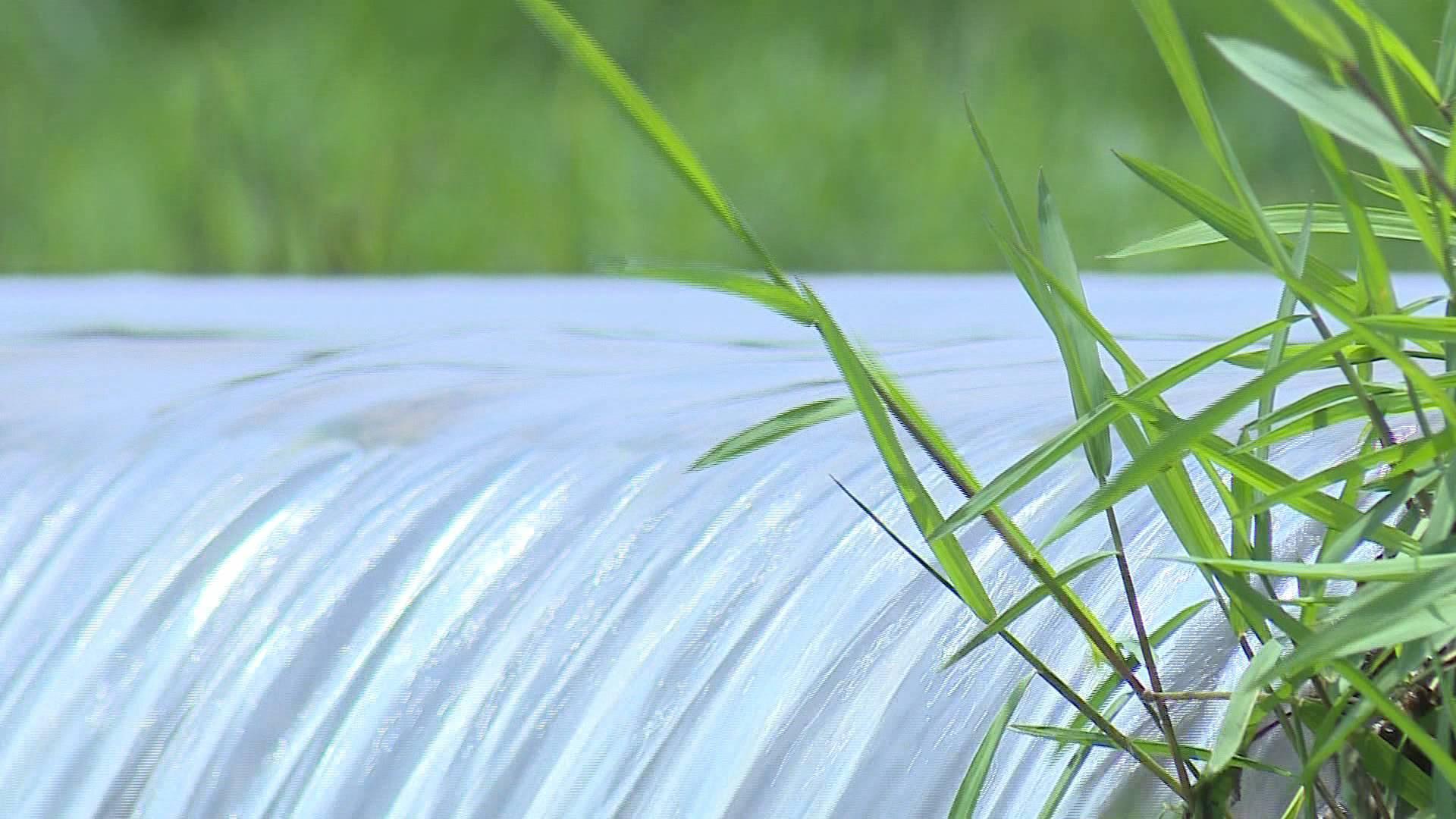 完成率90.4%!山东省饮用水水源地整治快速推进