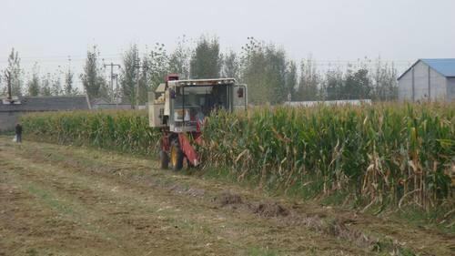 山东今年投入各类农业机械210万台全力做好三秋生产