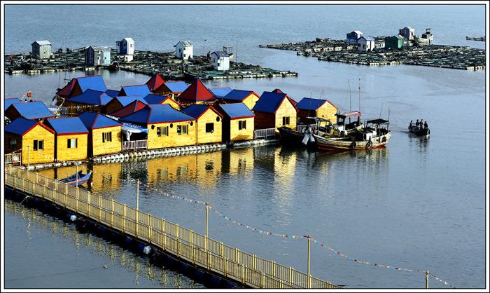 """靠海吃""""海""""吃出新花样!温州洞头创新打造乡村振兴海岛样板"""