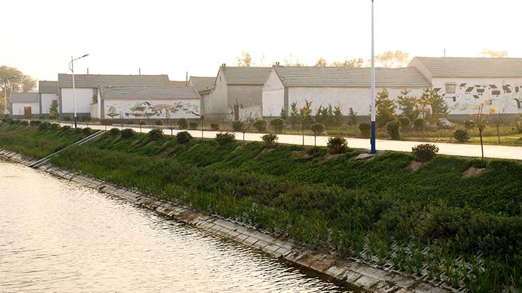唤醒沉睡资源工程|德州开发闲散土地1.67万亩 贫困户每年受益800元