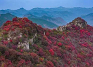 海丽气象吧丨潍坊未来两天持续晴好天气 正是赏秋好时节