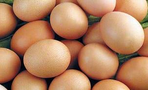 临淄公布一批食品抽检信息 2批次鸡蛋检出氟苯尼考