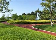 """这份""""绿色礼包""""请查收 威海高区城区4个街头游园建成开园"""