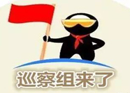 """泰安市岱岳区委创新巡察方式 实行""""四步战略"""""""