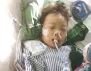 潍坊6岁男童惨遭车祸至今昏迷不醒 急需社会救助