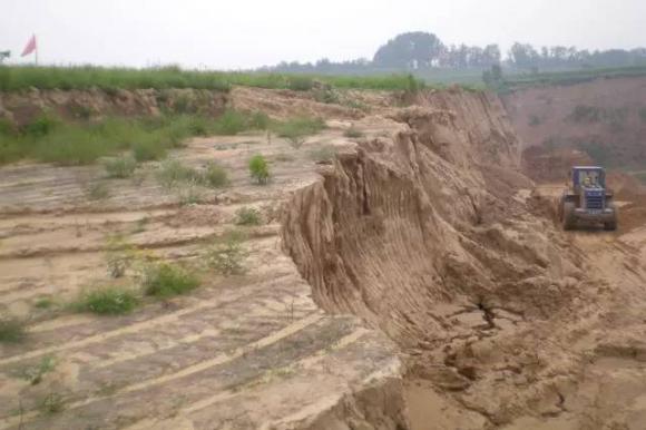枣庄首例公益诉讼案宣判  被告犯非法占用农用地罪获刑一年半