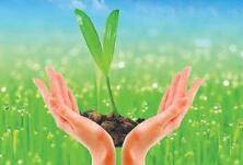 国内外植物病毒专家齐聚山农大研讨新进展