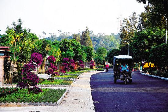 点赞!枣庄俩村庄入选第一批美丽村居建设省级试点村庄名单
