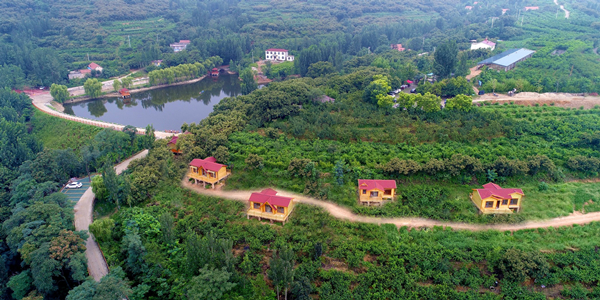 蒙阴安康村:绘就诗意田园 打造独具沂蒙风情的江北水乡